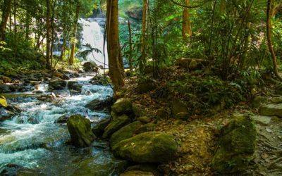 Veränderung, im Fluss des Lebens sein